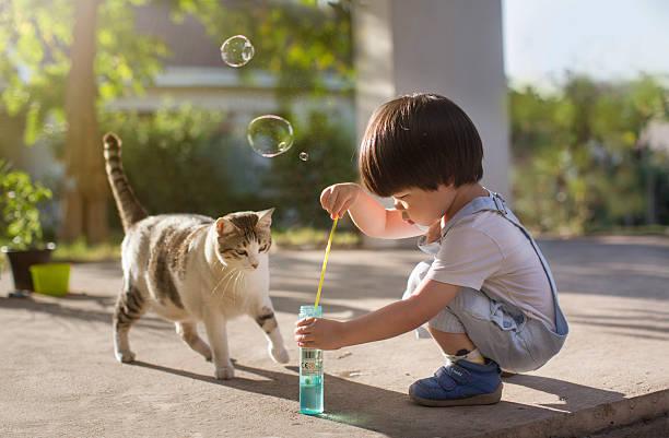 Jeune enfant qui joue à faire des bulles avec son chat